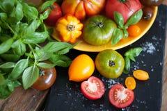 Manjericão e tomates frescos Fotos de Stock
