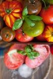Manjericão e tomates frescos Fotografia de Stock Royalty Free