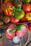 Manjericão e tomates frescos Fotos de Stock Royalty Free