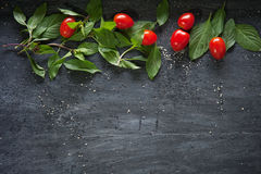 Manjericão e tomates no fundo de madeira Imagens de Stock Royalty Free