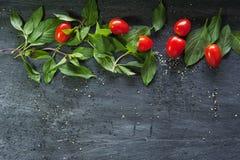 Manjericão e tomates no fundo de madeira Foto de Stock Royalty Free
