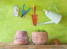 Manjericão, ferramentas de jardinagem, Imagens de Stock Royalty Free