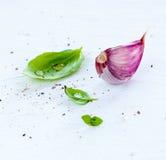 Manjericão fresca e alho roxo no fundo branco Fotografia de Stock Royalty Free