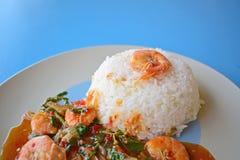 Manjericão fritada com camarão Foto de Stock