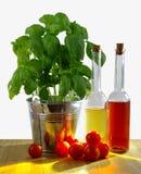Manjericão na cubeta do metal com tomates frescos e a garrafa verde-oliva em Ta Imagem de Stock