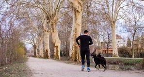 Mankörningar med hans hundstad parkerar royaltyfri bild