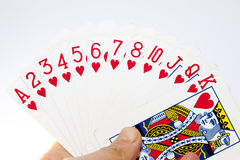 Mankind playing the poker card Stock Image
