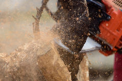 Manklippbråte med chainsawen Royaltyfria Foton