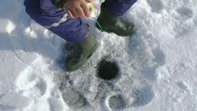 Manlåsfisk på vintersjön 100fps lager videofilmer