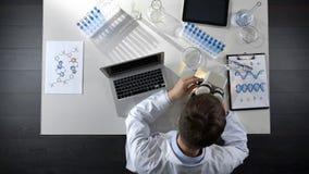 Manlig analytiker som gör observationer av prövkopian under mikroskopet, labbforskningtopview royaltyfri bild