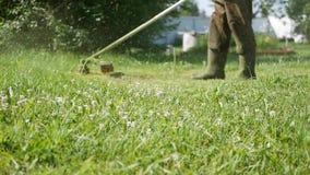 Manlig arbetare med bensingräsklipparebeskäraren med bitande gräs för motor på en solig sommardag Klippa gräs i landet stock video