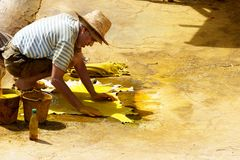 Manlig arbetefärg in i råläder på en gammalmodig garveri Arkivfoton
