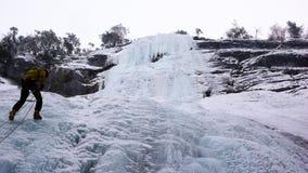 Manlig berghandbok som rappelling av en brant fryst vattenfall efter en isklättringutfärd Royaltyfri Foto
