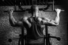 Manlig bodybuildingidrottsman nen Doing Pull Ups royaltyfri bild