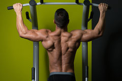 Manlig bodybuildingidrottsman nen Doing Pull Ups royaltyfria foton