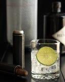 Manlig gin och uppiggningsmedel Royaltyfri Bild