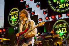 Manlig gitarrist In Concert royaltyfria foton