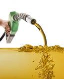 Manlig hand som pumpar bensin i en behållare royaltyfria bilder
