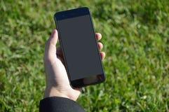 Manlig hand som rymmer den smarta telefonen med gräsbakgrund royaltyfri bild