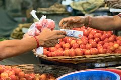 Manlig köpare som betalar med kassa, når att ha köpt tomater på den Port Louis marknaden i Mauritius royaltyfri foto