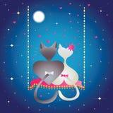 Manlig katt och kisse. vektor illustrationer