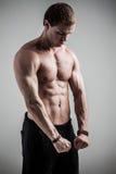 Manlig modell för kondition Royaltyfri Foto