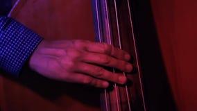 Manlig musiker som spelar nära övre för kontrabas stock video