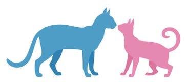 Manlig och kvinnlig katt stock illustrationer