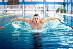 Manlig simmare som utför tekniken för fjärilsslaglängd på den inomhus pölen Arkivbilder