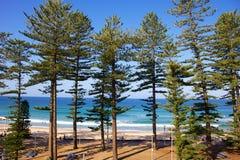 Manlig strand Australien Arkivbilder