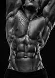 Manlig torso Arkivbild
