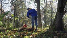 Manlig trädgårdsmästare som krattar färgrika sidor i hans husgård nära skogen 4K lager videofilmer