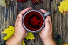 Manliga händer rymmer en kopp med rött te mot bakgrunden av en w Royaltyfri Bild