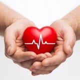 Manliga händer som rymmer hjärta med ecglinjen Royaltyfri Bild