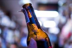Manliga hållande ölflaskor royaltyfria bilder