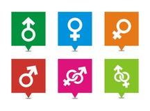 Manliga kvinnliga symboler - fyrkantiga pekare royaltyfri illustrationer