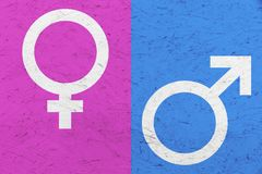 Manliga och kvinnliga genussymboler fördärvar, och Venus undertecknar över ojämn texturbakgrund för rosa färger och för blått Royaltyfria Foton