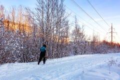 Manliga skidåkareritter i vintern parkerar på solnedgången royaltyfri bild