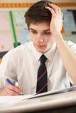 manlign belastade att studera för deltagare som var tonårs- Arkivfoton