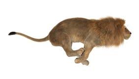 manligt lejon för tolkning 3D på vit Arkivfoto