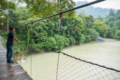 Manligt turist- anseende på upphängningbron i den Tangkahan floden, Indonesien Royaltyfria Bilder