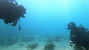 PADI diving instructor signals while deep underwater