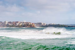 Manly Beach, Australia Stock Images