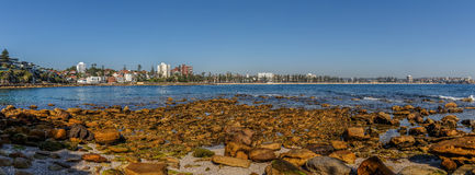 Manly Beach Panorama Royalty Free Stock Photo