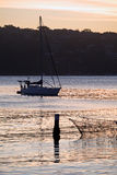 Manly Cove and Yacht at Sunset Royalty Free Stock Photography