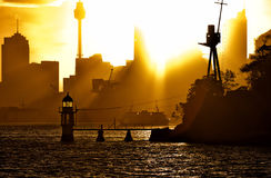 Manly ferry at sunset Royalty Free Stock Photo