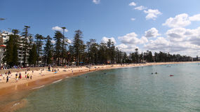 manly strand royaltyfria foton