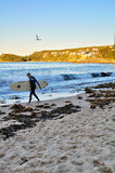 Manly surfer Stock Images