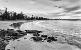 Manly Waterfront Beach Morning BW Royalty Free Stock Photo
