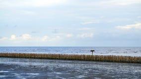 Manmade bamboo fence on mangrove beach skyline Royalty Free Stock Photography